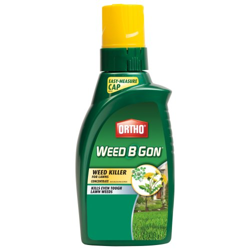Ortho 0408110 Weed B Gon Weed Killer for Lawn Concentrate, (B-gon Max Concentrate)