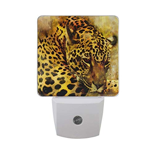 DIY Big Printing Leopard Patterns on Plug-in LED Night Light Warm White Night Light for Bedroom Bathroom Hallway Staircase(0.5W 2-Pack) -