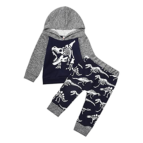 hoodies set for boys newborn boy outfits clothes 0-6 months Dinosaur winter fall long sleeve shirt pants photoshoot photography infant baby