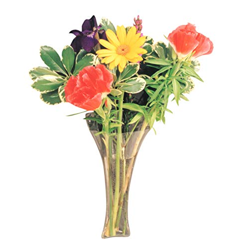 Gadjit Vinyl Window Vase Trumpet Style Flexible Vinyl Vase - Attaches to Windows, Mirrors, or Other Non-Porous Surfaces with Suction Cups Vase Holds a Bouquet of Flowers, Water, Greenery
