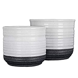 "Hamilton Macphee & Tonbridge Black and White Speckled Planters (2 Sizes) - Large 6"", Medium 5"" - Decorative Storage Jars - Indoor & Outdoor Flower and Plant Containers 52"