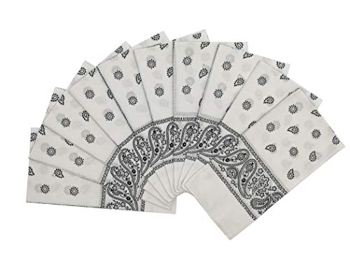 T&Z 100% Cotton 10 Pack Fine Bandanas Professional Factory Manufactured (White)]()