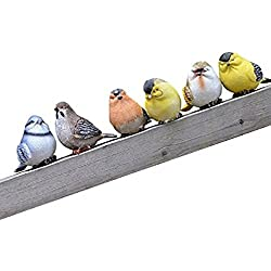 「Shikyo Japan」 Garden ornament Cute Small Bird (Six Small Birds)
