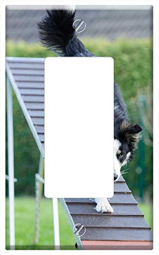 Switch Plate Single Rocker/GFCI - Agility Web Catwalk Training Dog Training 2