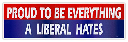 Stickers Republican Anti - Bumper Sticker Decal - Proud To Be Everything A Liberal Hates - Republican Party