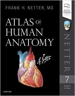 Atlas De Anatomia De Netter Descargar Gratis Pdf Download