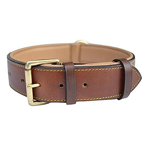 Extra Large Breed Dog Collars: Amazon.com