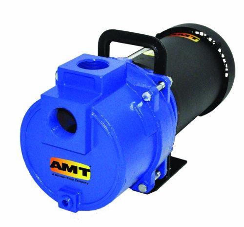 AMT Pump 3793-95 Sprinkler Booster Pump, Stainless steel, 2 HP, 1 Phase, 115/230V, Curve D, 1-1/2