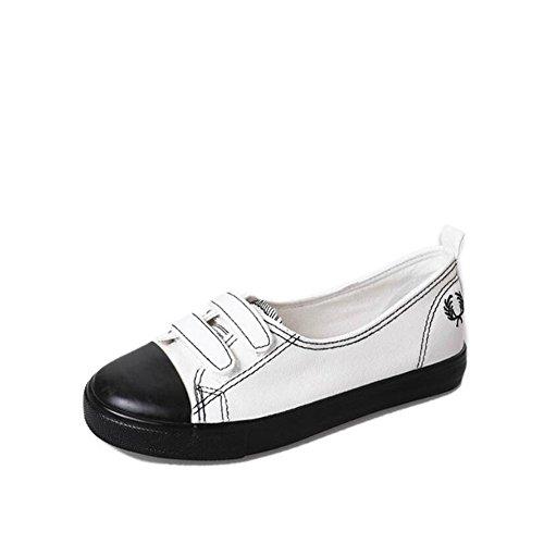 Los zapatos de primavera de las mujeres calzan los colores mezclados de los zapatos de lona salvajes zapatos cómodos planos Frenul Velcro GAOLIXIA Velcro