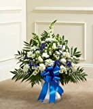 Fresh New Day - Flowers For Sympathy - Sympathy Flower Arrangements - Sympathy Plants - Same Day Sympathy Flowers - Condolence Flowers