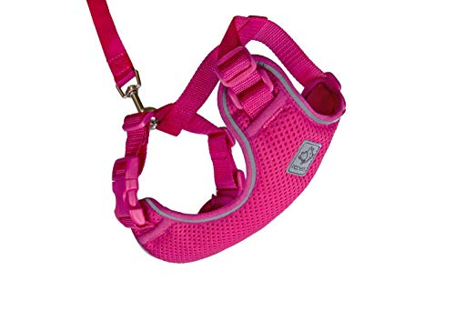 - RC Pet Products 53804014 Primary Collection Adventure Kitty Harness, Medium
