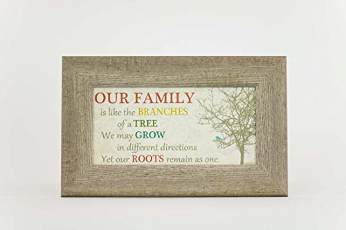 Our Family Branches Of A Tree Barn Wood Barnwood Grey Red Decor Framed Art Picture 10x16