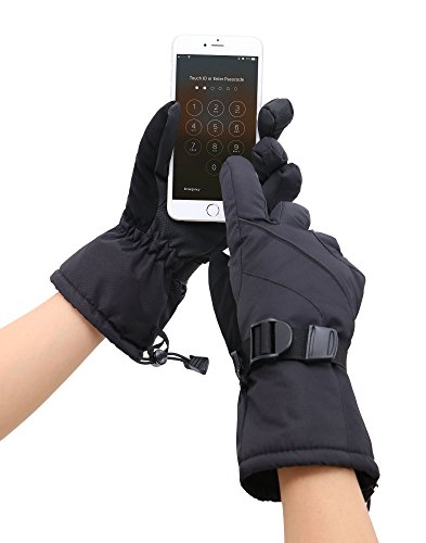 D Diana Dickson Mens Winter Sportswear Waterproof Touchscreen Ski Gloves,Black,L