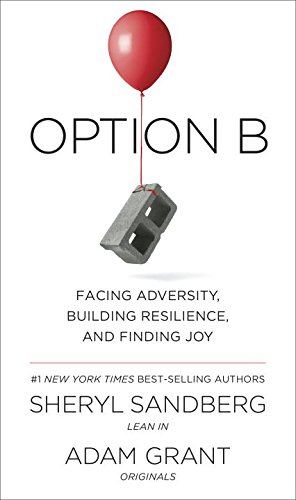 Option B: Facing Adversity, Building Resilience, and Finding Joy PDF