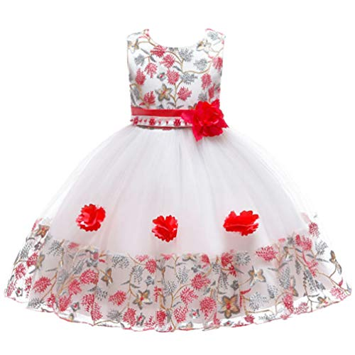 2T 24 Months 3T Fancy Baby Girls Dress Fit Knee Length Tulle Vintage Princess Floral Summer Baptism Wedding Party Little Girl Dress Watermelon 2 3