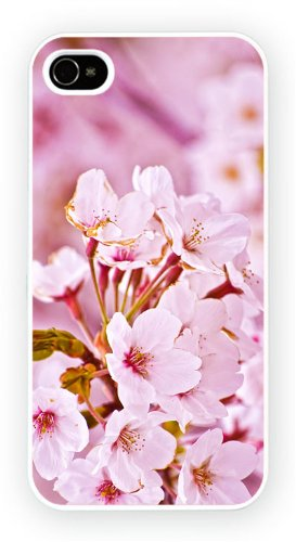 Sakura Cherry Blossoms Flower Japan, iPhone 6, Etui de téléphone mobile - encre brillant impression