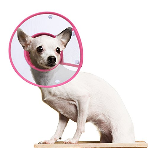 PETBABA Dog Cone Collar in Recovery, Clear Elizabethan Not Block Vision, Soft Padded E-Collar Protect Neck, Suitable Kitten Cat Puppy Pet in Surgery Remedy Grooming - M in Rose