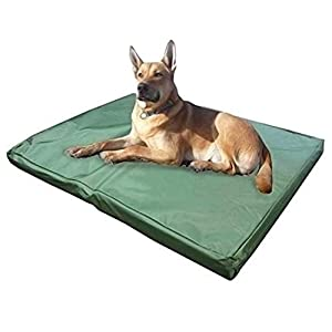 ADOV Double-Sided Pet Bed, Premium Waterproof and Washable Cover, Orthopaedic Memory Foam Dog Bed Mat, Medium Kennel Pads for Dogs, Cats, Other Small and Large Sized Pets - [84 x 54 x 5cm] 12
