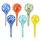 "Trenton Gifts Small Multi-Colored Glass Watering Globes | Set of 6 | Measures 6"" L x 2.5"" D"