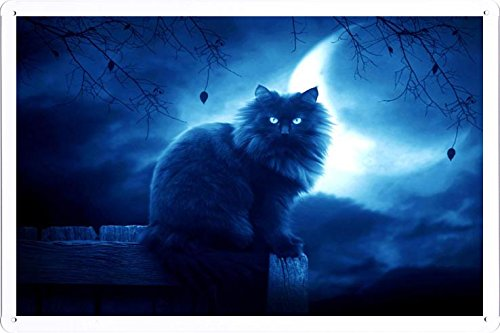 Abstract Sign Cat Black Moon Night Silhouette Outlines 32004 Metal Tin Poster