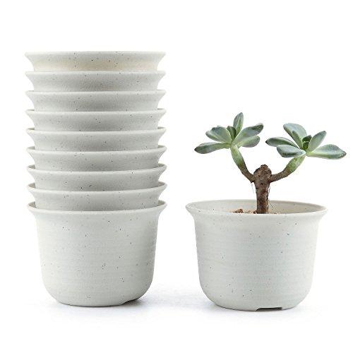 T4U 3.5 Inch Plastic Round Succulent Plant Pot/Cactus Plant Pot Flower Pot/Container/Planter Package 1 Pack of 10 by T4U