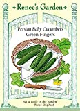 Cucumber - Baby Persian Seeds