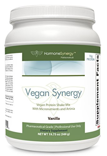 Vegan Synergy | Non-GMO Complete Vegan Protein Nutritional Shake | French Vanilla | 15 grams Protein | Aminogen & Artinia | Gluten, Dairy, Soy & Fructose Free | eBooks Included