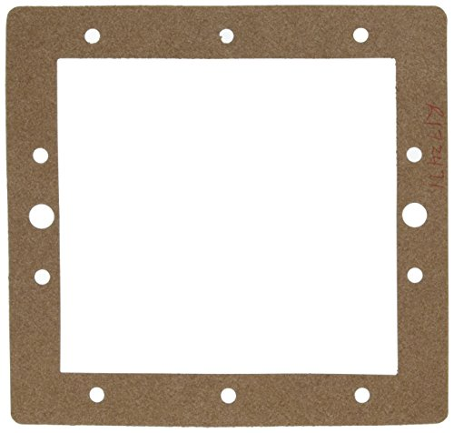 - Pentair R172471 Front Face Plate Gasket Replacement Dynamic Series Pool and Spa Cartridge Filter