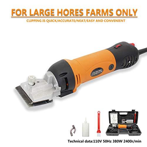 Bestselling Horse Grooming & Bathing Supplies