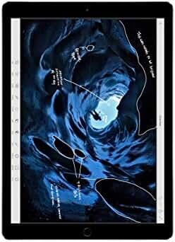 Apple iPad Pro  (256GB, Wi-Fi, Space Gray) 12.9-inch Display
