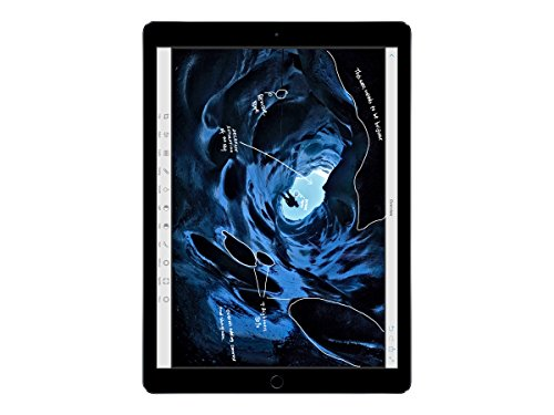 Apple iPad Pro (256GB, Wi-Fi, Space Gray) 12.9-inch Display