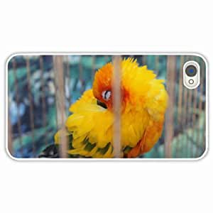 Customized Apple iPhone 4 4S Hard PC Case Diy Personalized DesignCover animals Mood different Birds parrot White