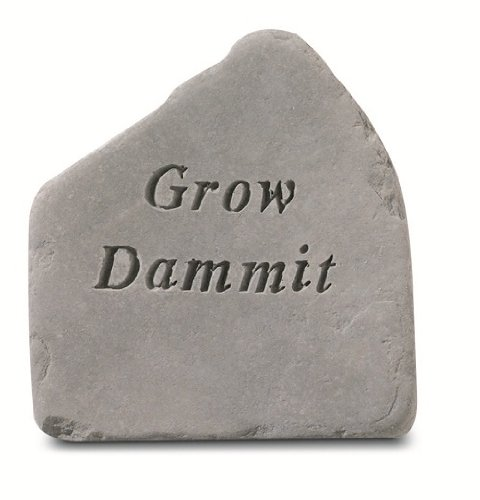 Kay Berry Inc Grow Dammit Accent - Rock Garden Accent
