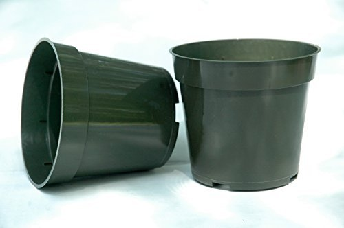 4 Inch Standard Plastic Pots for Plants, Cutting, and Seedlings - 30 Pack by DILLEN
