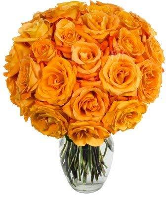 Flowers - Two Dozen Orange Roses (Free Vase Included)