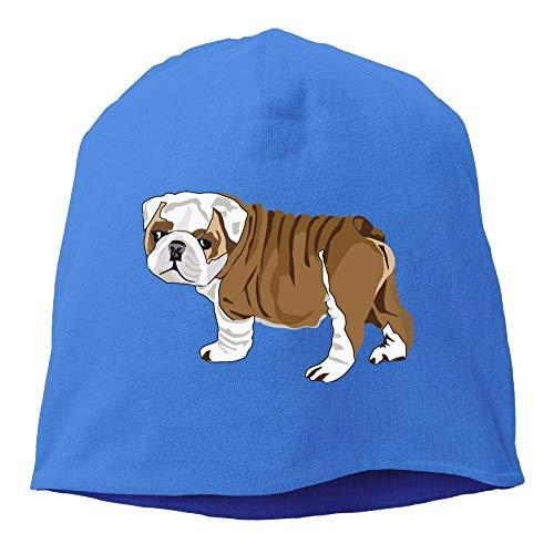 (Daily Beanie Hats Bulldog Puppy Men's Warm Winter Cuff Watch Cap Classic RoyalblueOne)