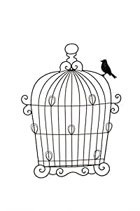 "Hosley's 22.5"" High Metal Birdcage Photo Collage Wall Decor, Oil Rubbed Bronze Finish. Holds 7 Photos. Ideal GIFT for Wedding, Party, Spa, Meditation, Dorm"