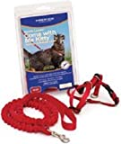 Come With Me Kitty Harness M Red