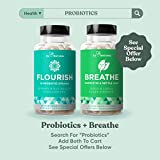 BREATHE Sinus & Lungs Breathing – Seasonal