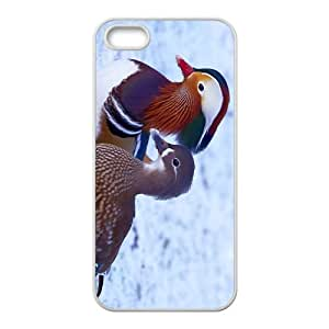 Mandarin Duck In Snow DayHigh Quality Plastic Case for Iphone 5s