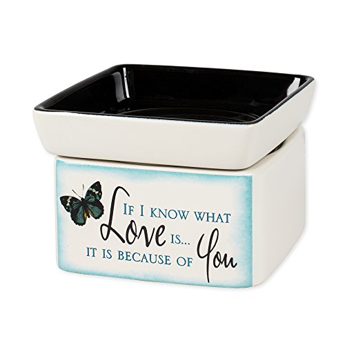 Elanze Designs Love You Blue Butterfly Electric 2 in 1 Jar Candle Wax Tart Oil Warmer