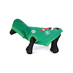 PET LIFE 'Hands Up Santa' LED Lighting Fashion Designer Holiday Christmas Pet Dog Costume Sweater Hoodie w/ Included Batteries, Large, Green