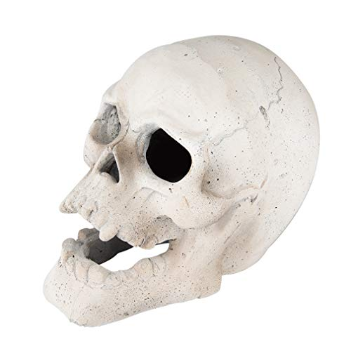 Stanbroil 9-Inch Imitated Human Skull Gas Log for