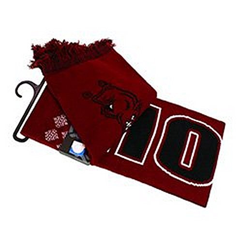 Top of the World NCAA Licensed Arkansas Razorbacks Fringed Scarf