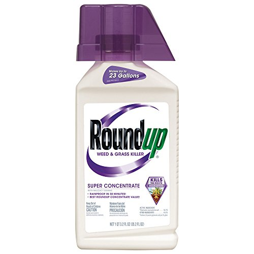 Roundup Weed and Grass Killer Super Concentrate, 35.2-Ounce (Best Thing To Kill Weeds In Flower Beds)