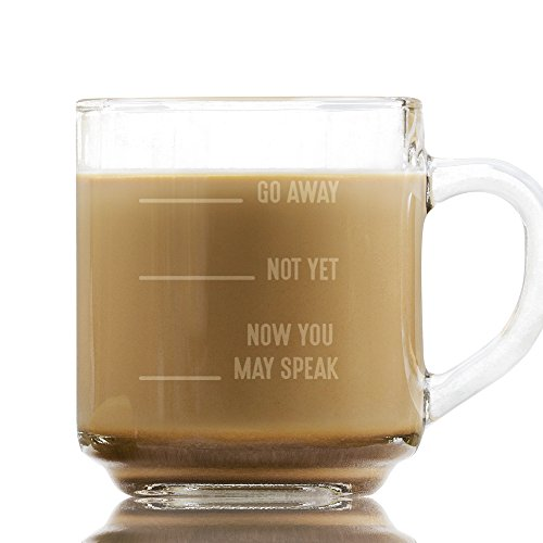 Now You May Speak Glass Etched Glass 10 Ounce Coffee Mug with Handle, Tea and Coffee, Gift for Coworkers, Birthday Gift, Funny Glass Coffee Mug (May Now Mug Coffee You Speak)
