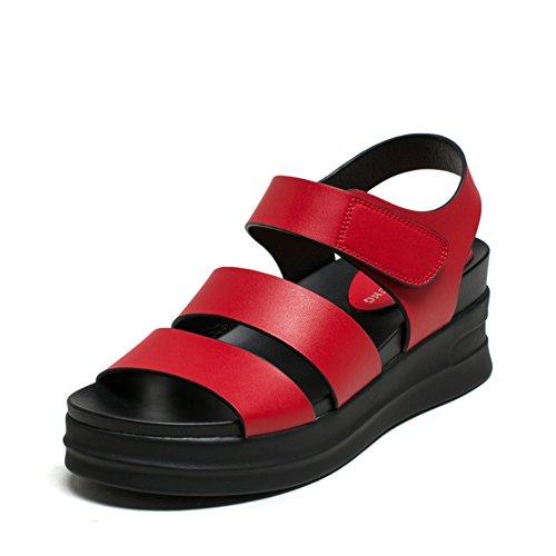 Sandalias De Verano Para Estudiantes De Fin/Una Palabra Con Los Zapatos De Las Mujeres Casuales B