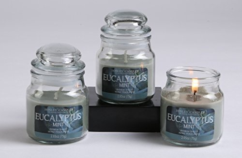 - Hosley Set of 3 Eucalyptus Mint Highly Scented, 2.65 Oz Wax, Jar Candle. Ideal votive GIFT for party favor, weddings, Spa, Reiki, Meditation, Bathroom settings O3