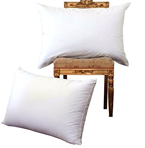 NP luxury White Goose Down Bed Pillows,100% Egyptain Cotton Cover,1200TCHypoallergenic,Bed pillows for Sleeping