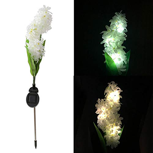 Hyacinth Outdoor Lights in US - 3